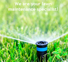 are you having issues with your hunter sprinkler heads if you have hunter products then we can definitely help fix the problem
